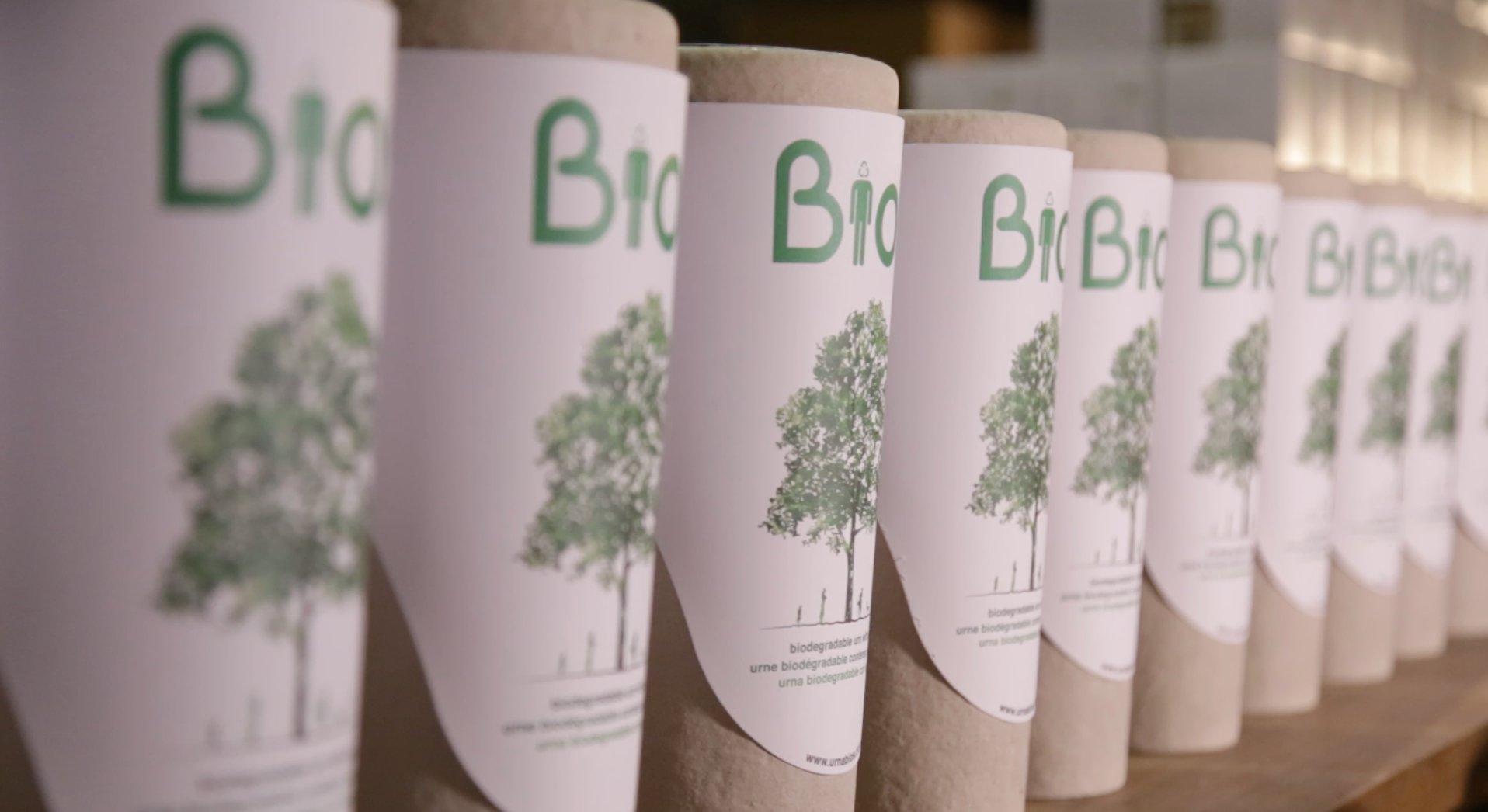 Urnen, aus denen Bäume werden. (Foto: Bios Urn)