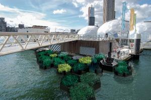 Eine frühere Collage. (Foto: Recycled Park Foundation)