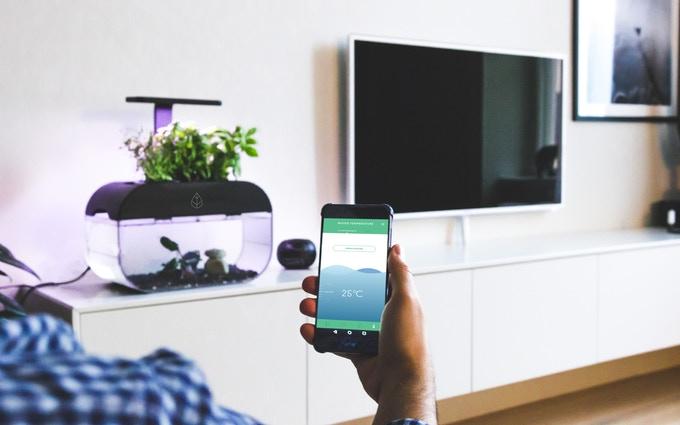 Ein grünes Lifestyle-Gadget? Sozusagen. (Foto: Ecobloom)