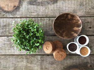 Die Grow-Grow-Nut macht das Züchten von Microgreens einfacher. (Foto: Grow-Grow Nut)