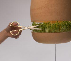 Licht und Gemüse - eine interessante Idee. (Foto: Benditas Studio)