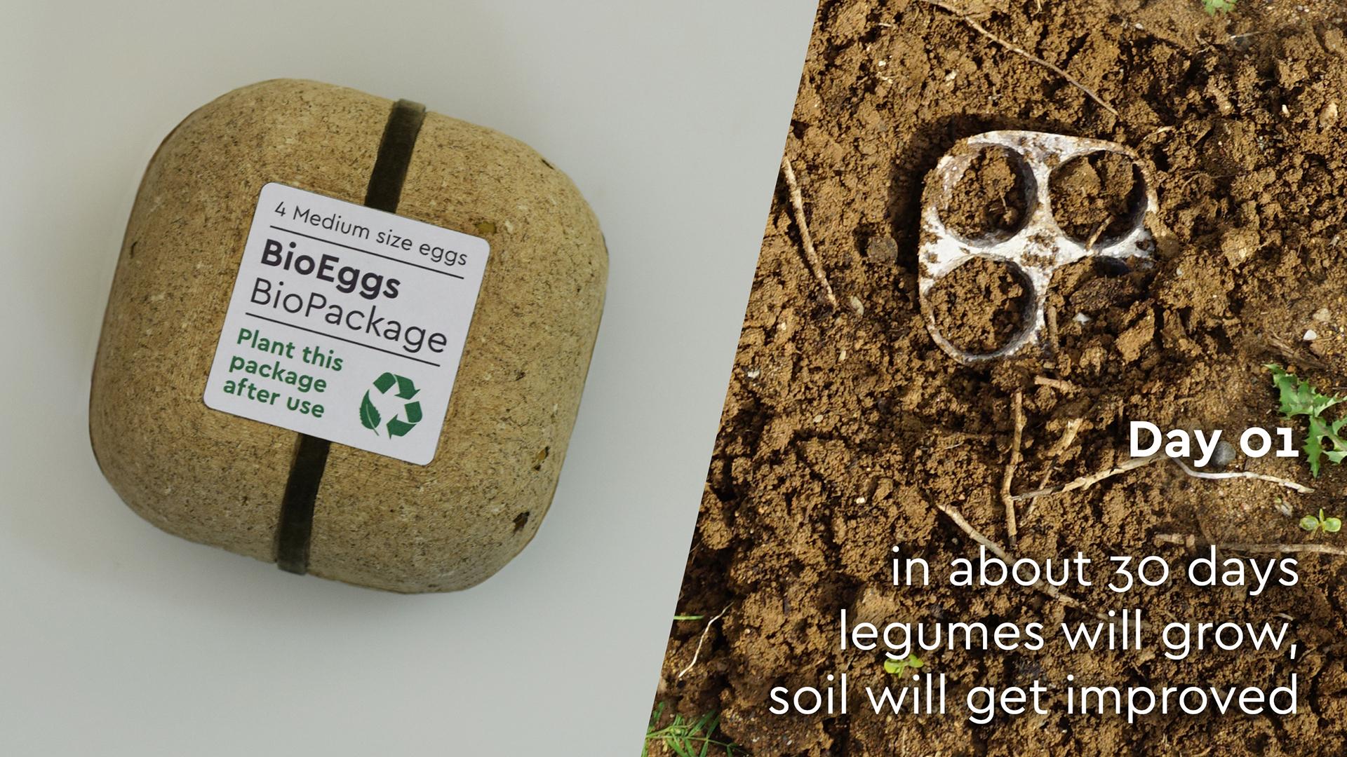 Aus Verpackungen werden Pflanzen. (Foto: George Bosnas)