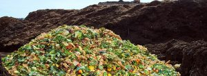 Lebensmittel-Verschwendung ist ein Problem. (Foto: Kitro)