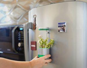 Oder am Kühlschrank... (Foto: Altifarm Enverde)