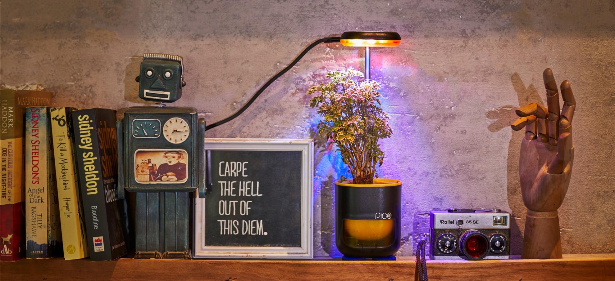 Pico passt überall in der Wohnung. Ihr braucht nur Strom. (Foto: Altifarm Enverde)