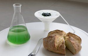 Guten Appetit? Spirulina selber züchten mit BioBombola. (Foto: ecoLogicStudio)
