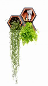 Horticus Living Wall. (Foto: Horticus)