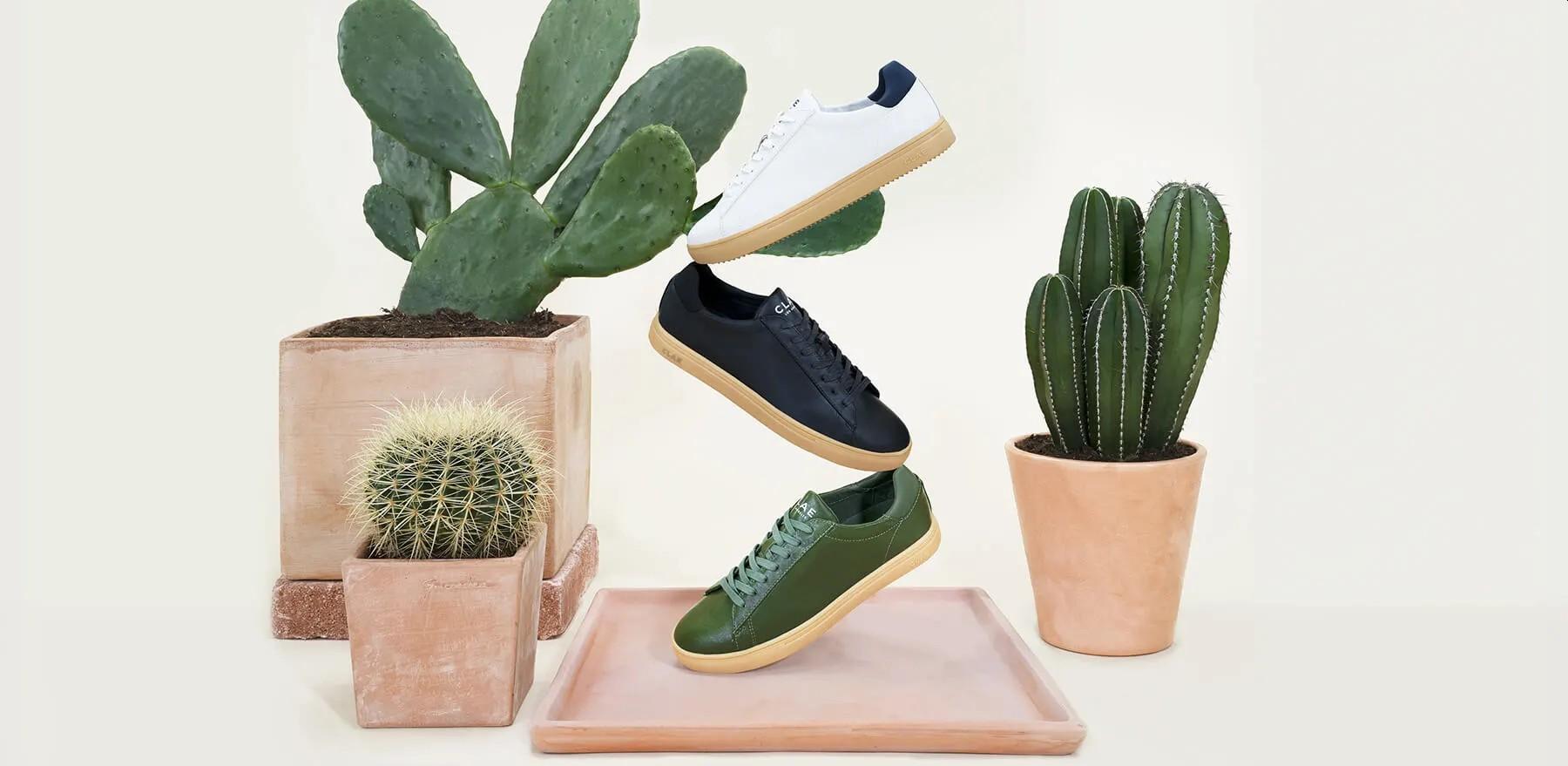 Stachelig sind die Sneakers aus Kaktusleder aber nicht. (Foto: Clae)